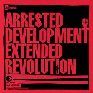 Extended Revolution
