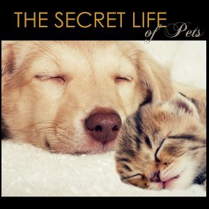 The Secret Life of Pets - Pet Therapy Music for Animals at Home Alone