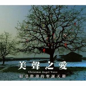 Christmas Angel Voice(美聲之愛 - 最受歡迎的聖誕天籟)