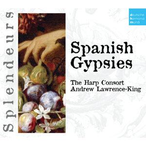 DHM Splendeurs: Spanish Gypsies