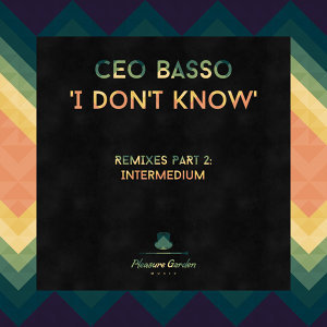 I Don't Know (Remixes Part 2)