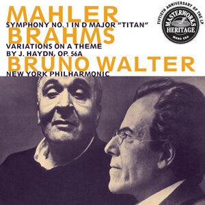 Mahler:  Symphony No. 1;  Brahms:  Haydn Variations