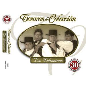 Tesoros De Colección