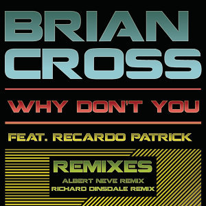 Why Don't You (Remixes)