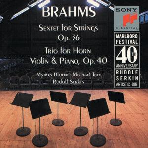 Brahms: Sextet, Op. 36; Horn Trio, Op. 40