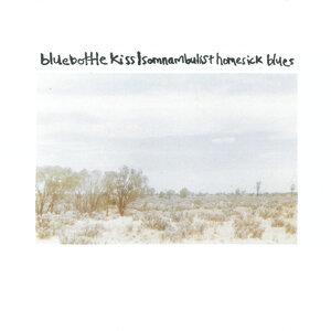 Somnambulist Homesick Blues