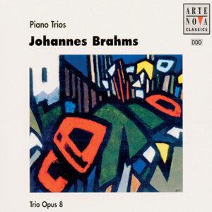 Brahms: Piano Trios 2-CD-BOX