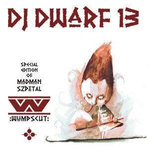 DJ Dwarf XIII - Special Edition Of Madman Szpital