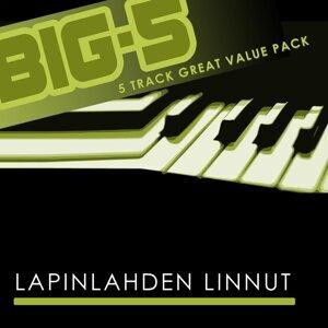 Big-5: Lapinlahden Linnut