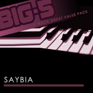 Big-5: Saybia