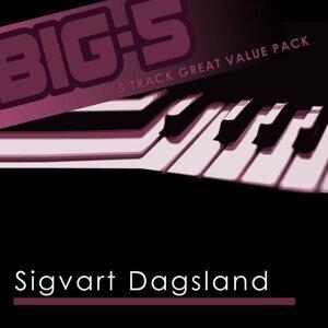 Big-5: Sigvart Dagsland