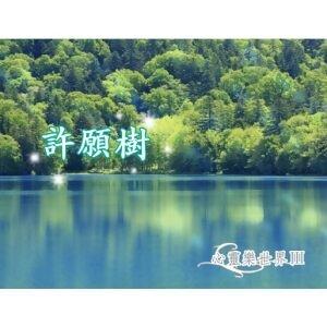 心靈樂世界3 - 許願樹