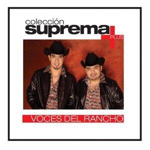 Coleccion Suprema Plus- Voces Del Rancho