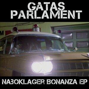 Naboklager Remix Bonanza