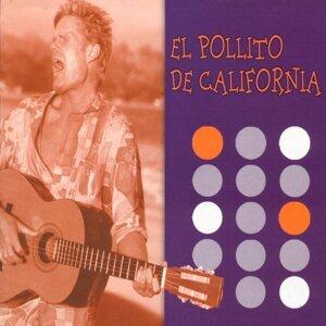 El Pollito De California