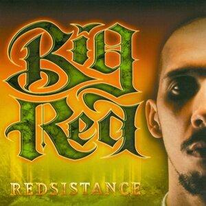 Redsistance