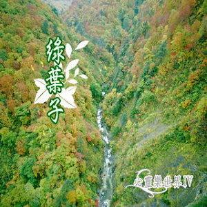 心靈樂世界4 - 綠葉子