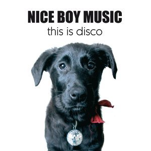 This Is Disco