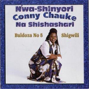 Bulldoza No 5 Shigwili