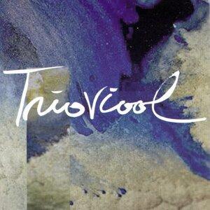 Trioviool