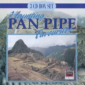 Haunting Pan Pipe Favourites
