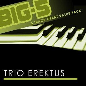 Big-5: Trio Erektus