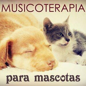 Musicoterapia Mascotas - Musica para Dormir para Perros, Gatos y Todos Animales (Aliviar el Estres)