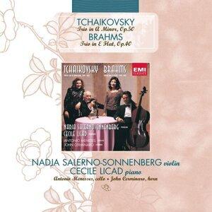 Piano Trio (Tchaikovsky) / Horn Trio (Brahms)