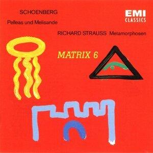 Schoenberg & R. Strauss - Orchestral Works