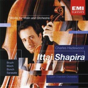 Bruch: Violin Concerto etc