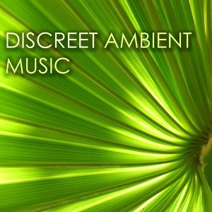 Discreet Ambient Music - Relaxing Background Songs for Airports and Lounge
