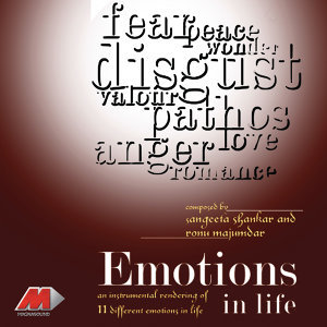 Emotions In Life