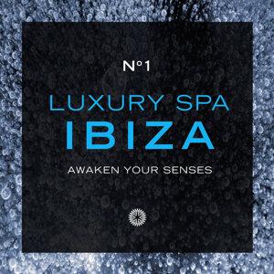 Luxury Spa: Ibiza