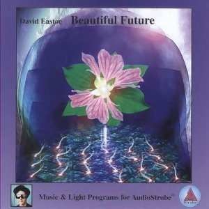 Beautiful Future(亮麗的未來)