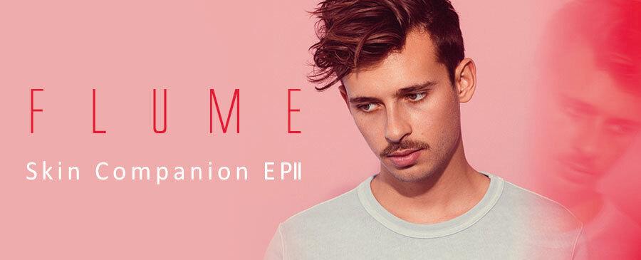 Flume  /  Skin Companion EP II