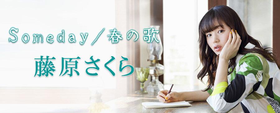 藤原さくら / Someday / 春の歌