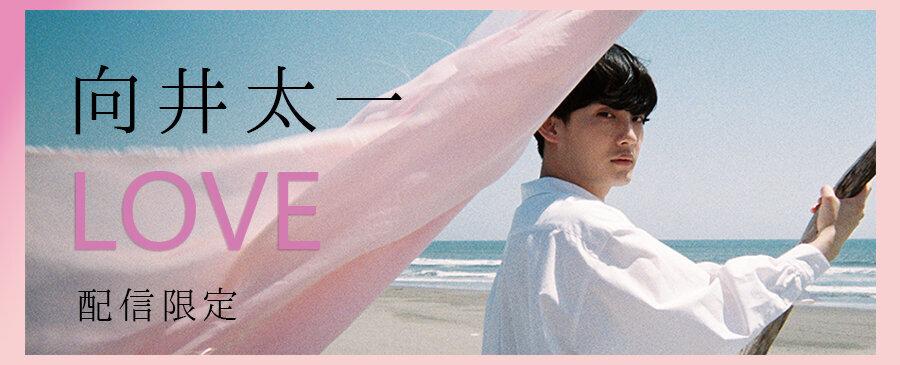向井太一 / LOVE