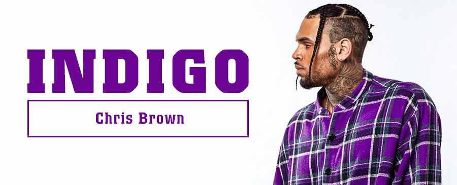 Chris Brown / Indigo