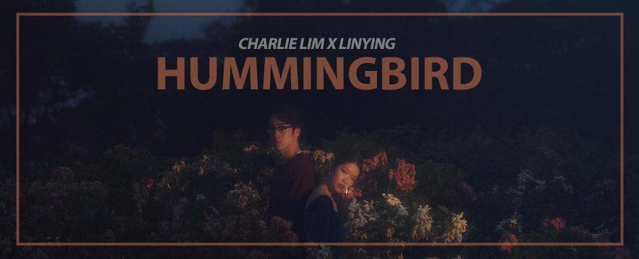 Charlie Lim / Hummingbird