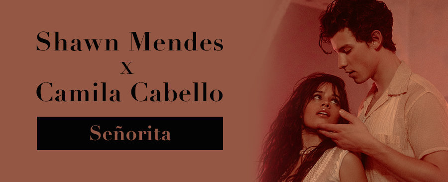 Shawn Mednes x Camila Cabello / Señorita