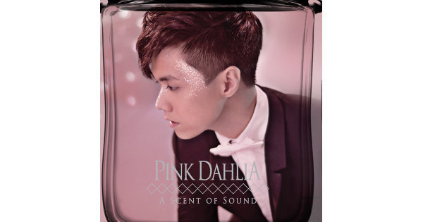 舊瓶插上新花【Pink Dahlia】不夠艷麗