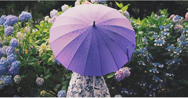 イントロを聴いただけで、せつなさが伝わってくる雨ソング