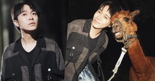 吳青峰「寫歌一時爽,唱時火葬場!」〈失憶鎮〉MV找來五種動物助陣