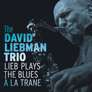 The David Liebman Trio 歌手頭像