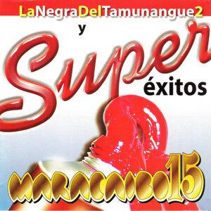 Maracaibo 15 歌手頭像