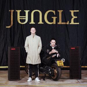 Jungle 歌手頭像