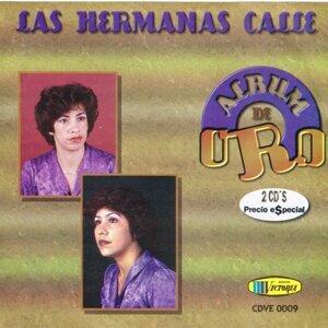 Las Hermanas Calle 歌手頭像