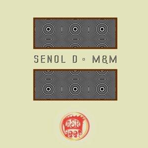 Senol D 歌手頭像