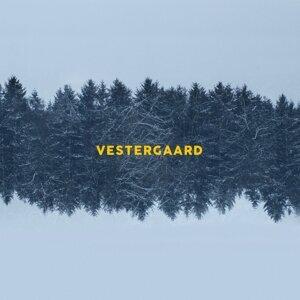 Lasse Vestergaard