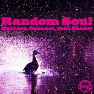Random Soul 歌手頭像